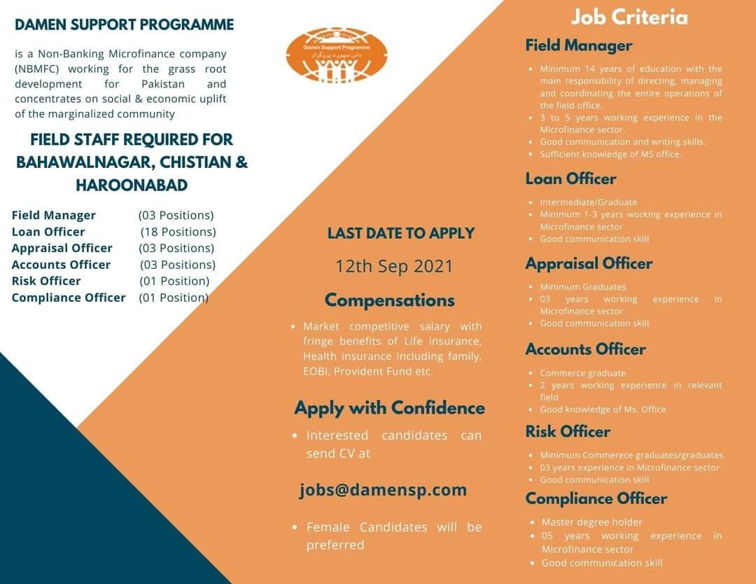 DAMEN SUPPORT PROGRAMME (DSP) Jobs 2021