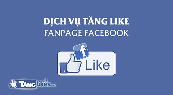 dich vu tang like fanpage
