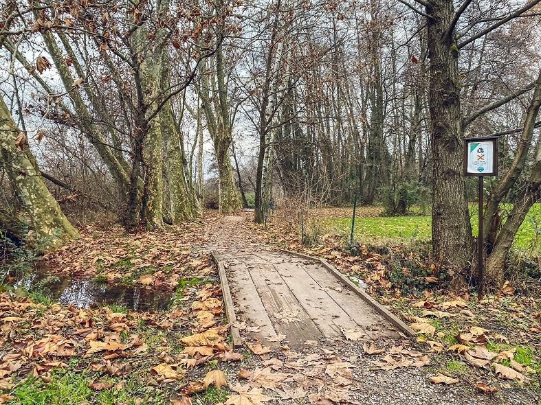 Ponti in legno nel giro ad anello del lago di Sartirana