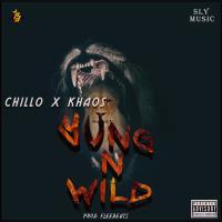 Mp3: Yung n wild_Chillo X Khaos