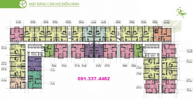 Mặt bằng thiết kế Hope Residence Phúc Đồng Long Biên