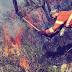 Comunità Montana, gli stipendi ai forestali non arrivano: il settore insorge