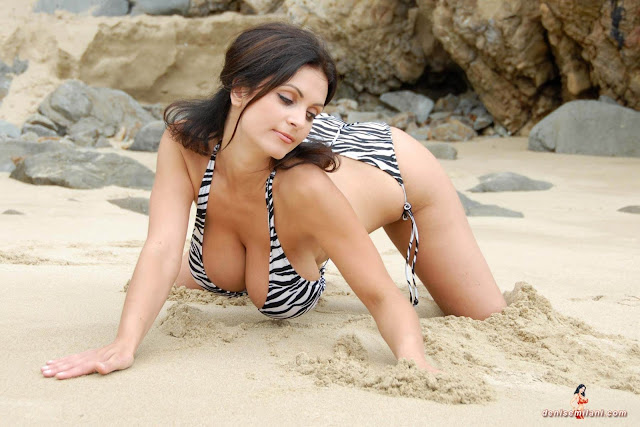 Denise Milani Beach Zebra HD Sexy Photoshoot Hot Photo 3