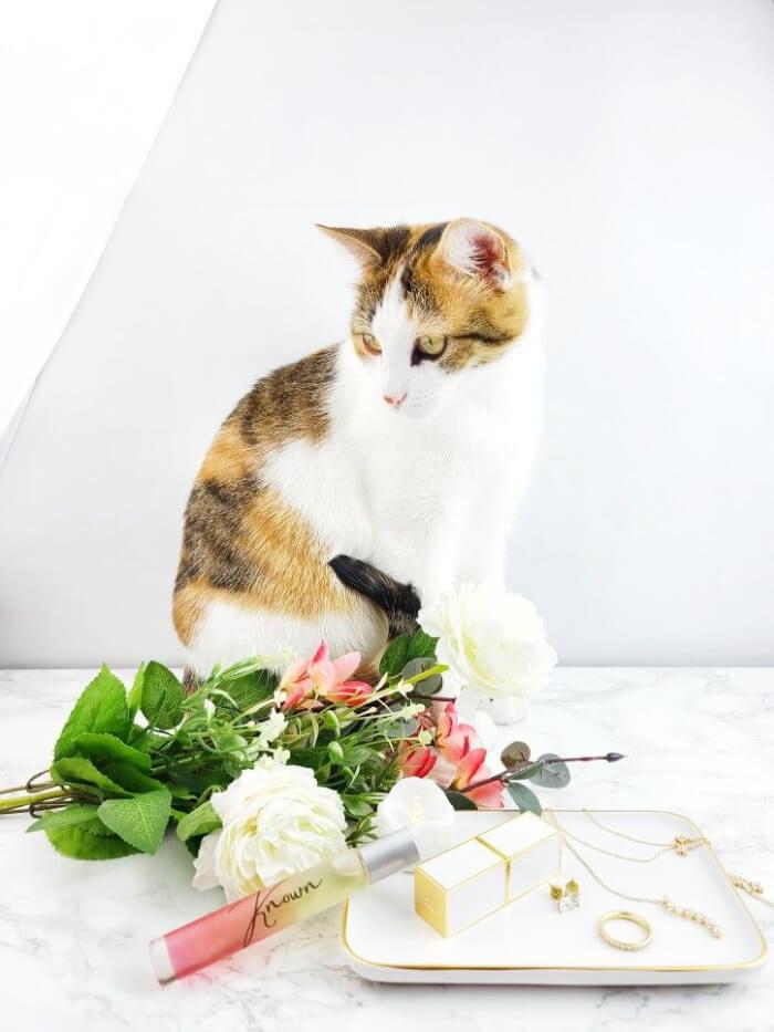 a-girls-gotta-spa-known-perfume-daisy-adair-3