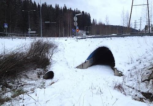 Ladun Maja Jyväskylä