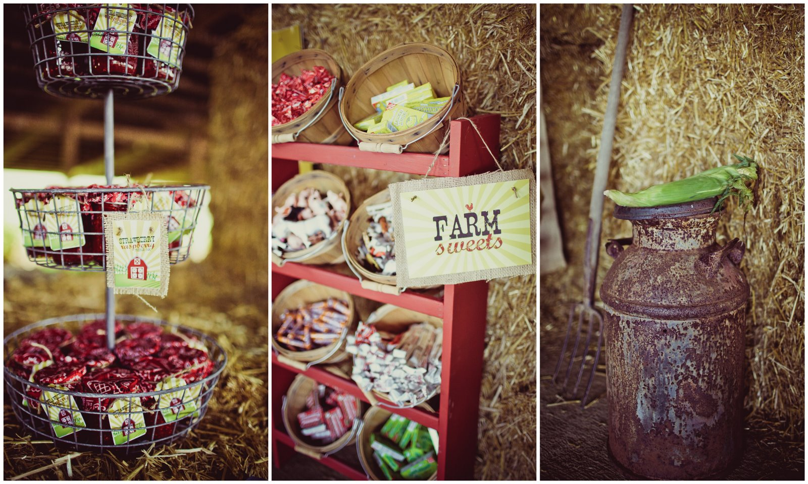 Down on the Farm: Hudson turns 3 - Jenny Cookies