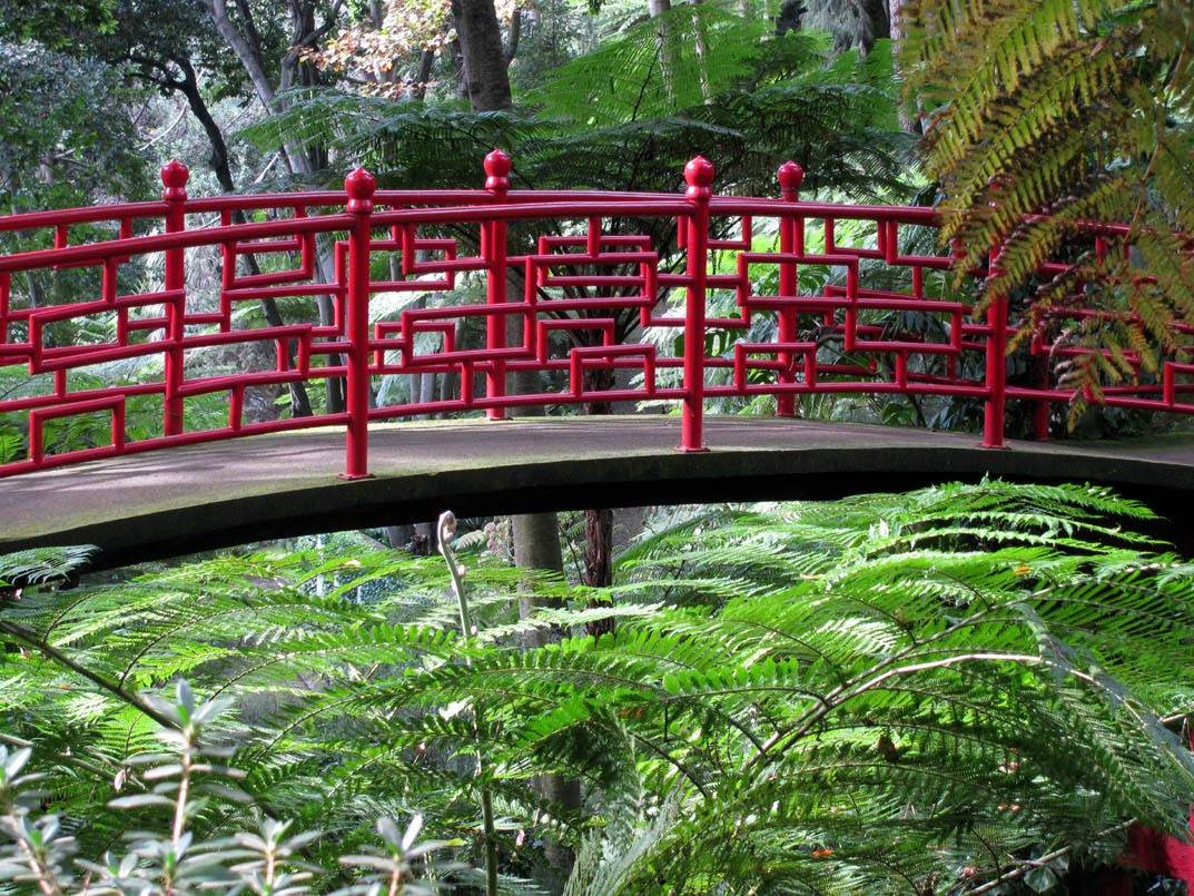 red bridge in a green environment