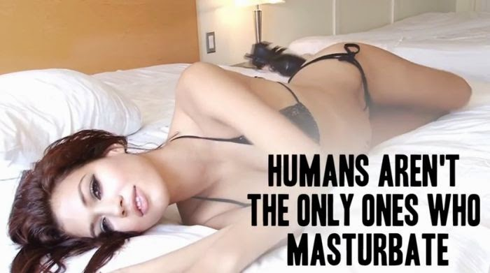 Asian girls with long nipples