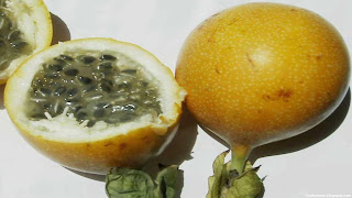 Granadilla fruit images wallpaper