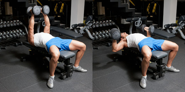 Best Chest Exercises of All Time - 30 Exercise - Dumbbell Bench Press