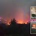 Μετανάστης που ήρθε για μια καλύτερη ζωή στην Ελλάδα έβαζε φωτιές  στο νομό Ηλείας