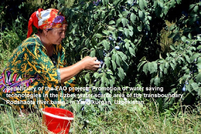 Science, technology and innovation are key to transform agri-food systems in Central Asia