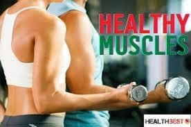 5 Best Training to Flexibly Make healthy muscles