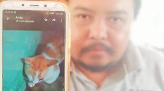Pemukulan Kucing Hingga Tewas di Bekasi, Pria Ini Dipolisikan