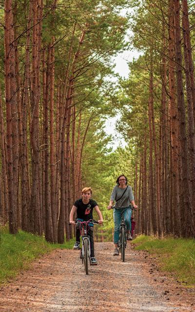 trasa rowerowa po Mierzei