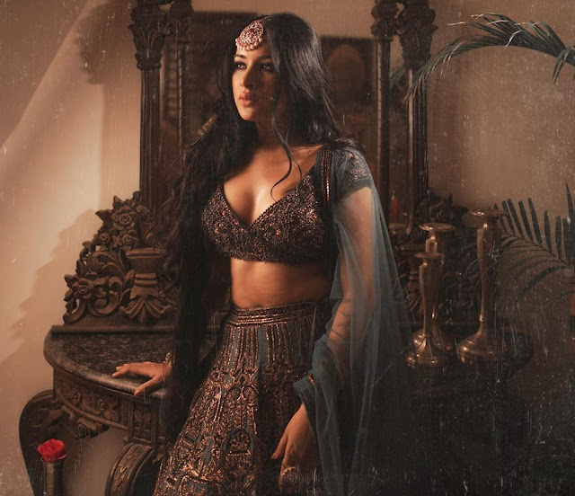 Bigg Boss 14 housemate Sara Gurpal married me, claims Punjabi singer Tushar Kumar