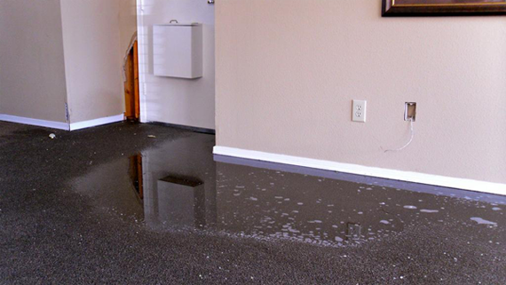 Water Damage Cleanup Phoenix