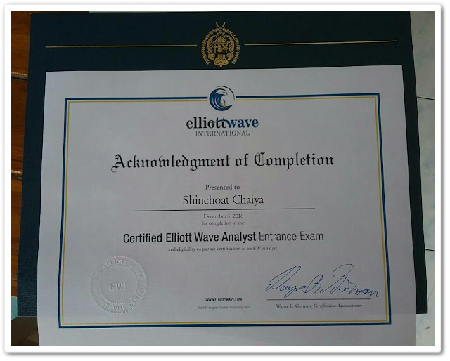Certified Elliott Wave Analyst