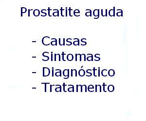 Prostatite aguda causas sintomas diagnóstico tratamento prevenção riscos complicações