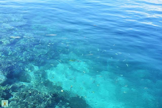 Snorkeling en Kri (Raja Ampat)