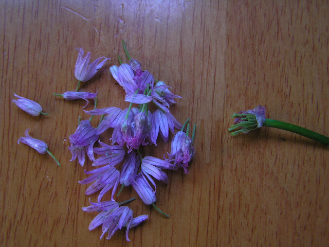 how to use a chive flower