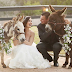BEER BURROS! Η νέα τάση με τα γαϊδουράκια στους γάμους