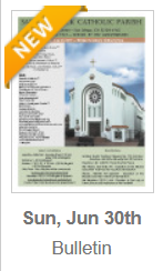 https://parishesonline.com/find/pastor-of-saint-patrick-catholic-parish-san-diego-california-corporation-sole/bulletin/file/05-0628-20190630B.pdf