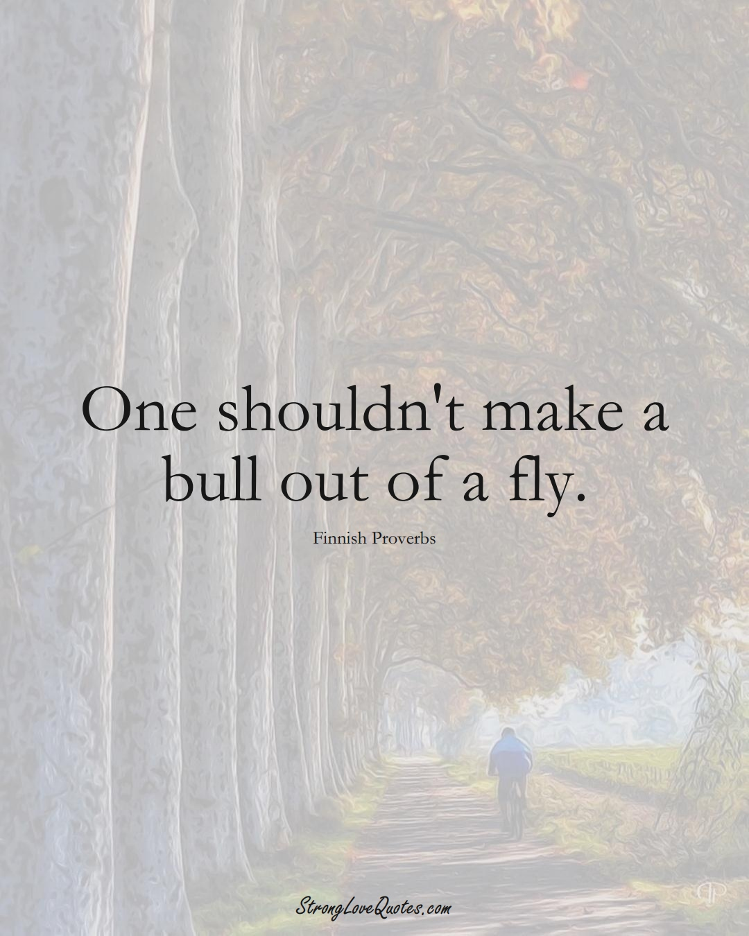 One shouldn't make a bull out of a fly. (Finnish Sayings);  #EuropeanSayings