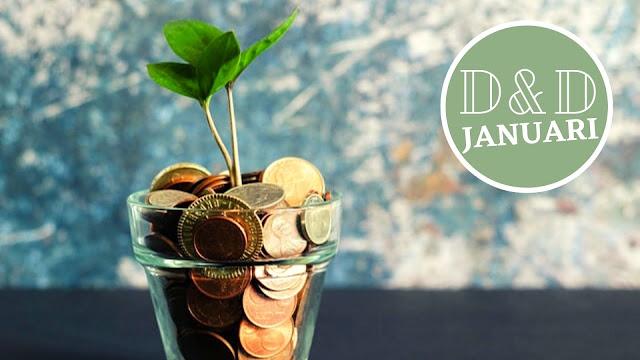 doelen en duurzaam januari 2021 Beleggen Sparen