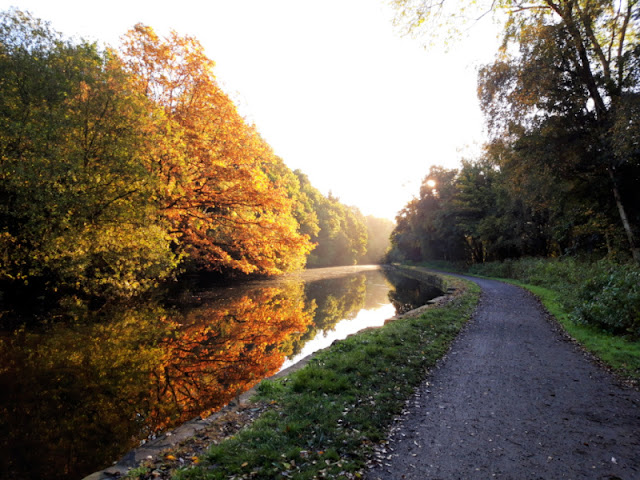 A view of the towpath and the sunlight and trees reflecting off the water