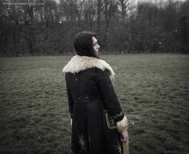 Snowflakes - Victoria Francés