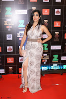 Bollywood Celebrities on the Red Carpet Of Zee Cine Awards 2017 Exclusive 082.JPG