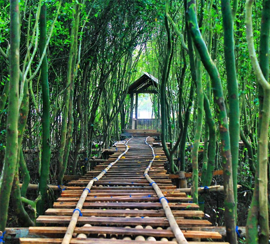 7 Tempat Wisata sekitar Kalibiru Jogja yang Bagus di Kunjungi