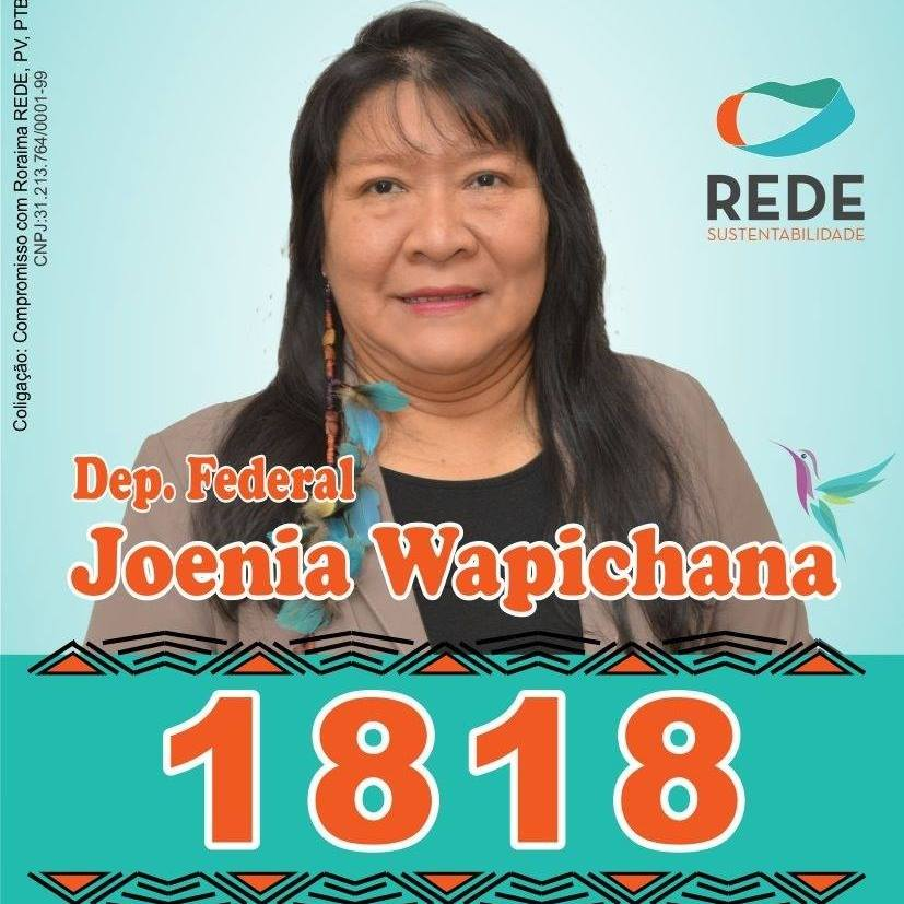 Dep. Federal Joênia Wapichana
