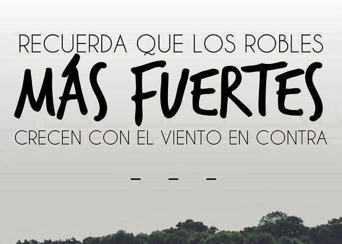 Frases De Actitud Fuerte: Imagenes Y Frases Facebook: Recuerda Que Los Robles Mas