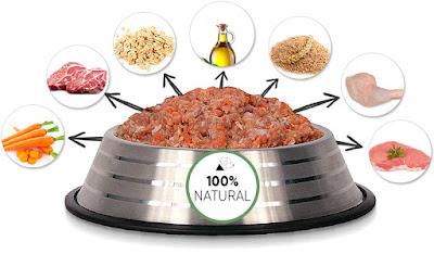 Alimentação Natural Ben Dog
