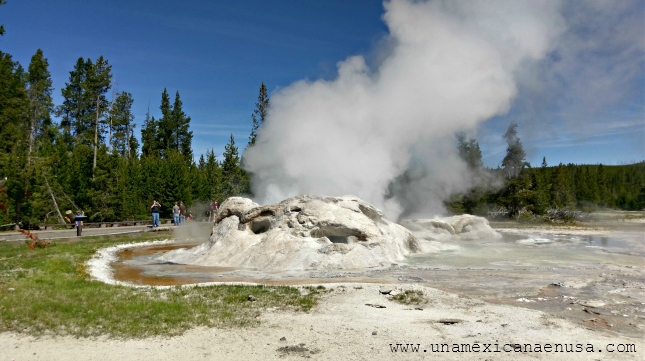 Yellowstone National Park: 25 fotos para que te animes a visitarlo by www.unamexicanaenusa.com