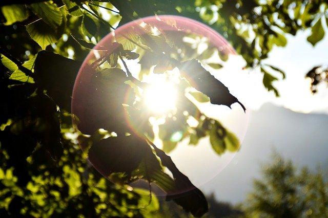 eclipsenoviembre2020