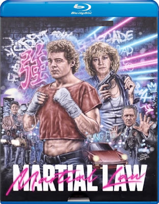Martial Law (1990) Dual Audio [Hindi – Eng] 720p | 480p BluRay x264 850Mb | 300Mb