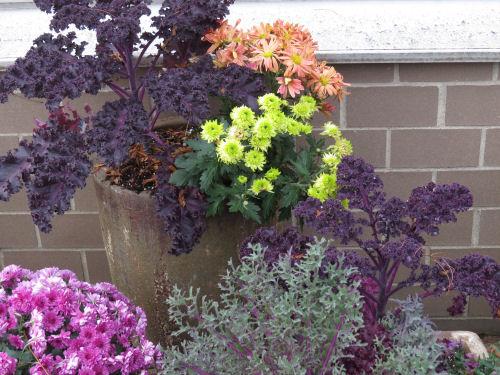 Meijer Gardens ornamental planters