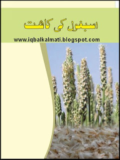 Ispaghol Ki Kasht (Cultivation) Booklet PDF Download