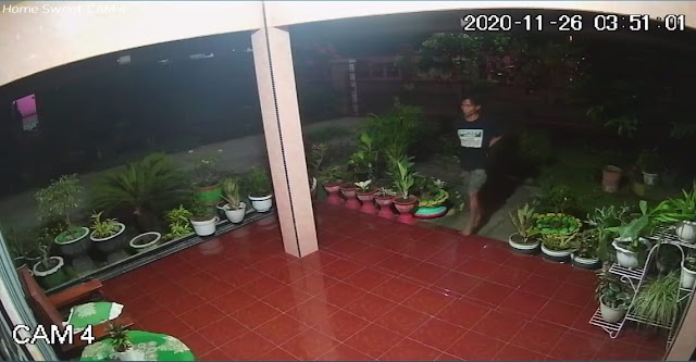 Terekam CCTV, Pencuri Bunga Hias Akhirnya Dibekuk Polisi