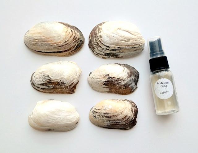 Iridescent Gold Misted Sea Shells by Dana Tatar