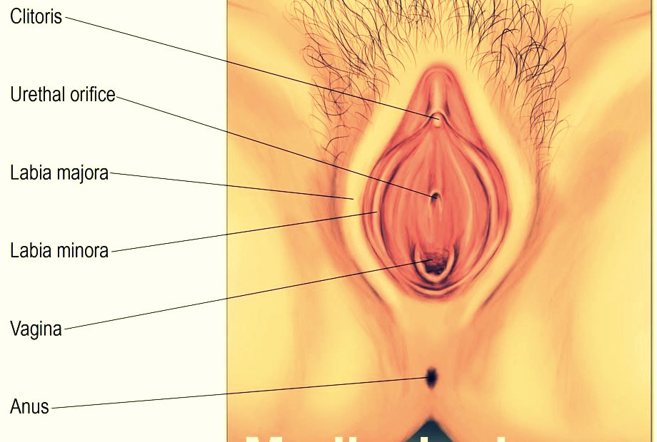 What Does Vaginal Dryness Look Like