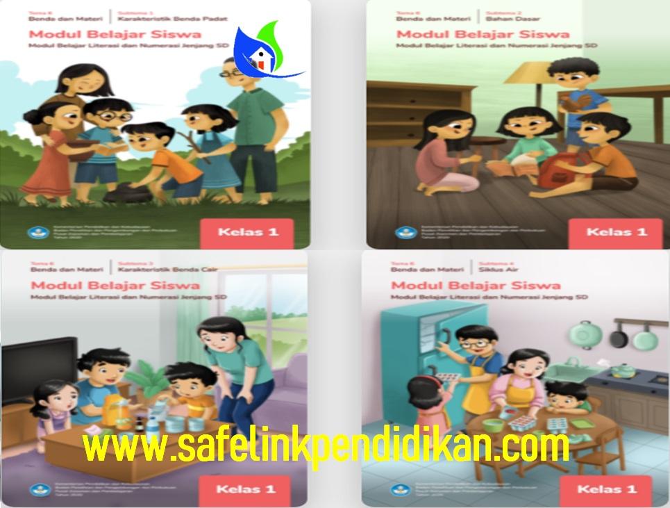 Modul Belajar Literasi Dan Numerasi Tema 6