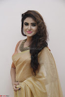 Sony Charistha in Lovely Brown Saree and Choli Spicy Pics ~  Exclusive 20.JPG