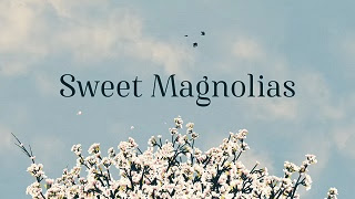 Title Screen for the Netflix Series Sweet Magnolias
