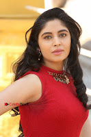 Telugu Actress Zahida Sam Latest Pos in Red Gown at RF Films New Movie Opening  0049.JPG