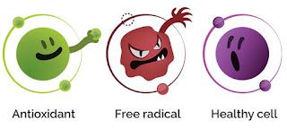 Kenapa Pentingnya Ambil Antioksidan?