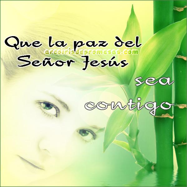 la paz sea contigo oraciones cristianas con imágenes